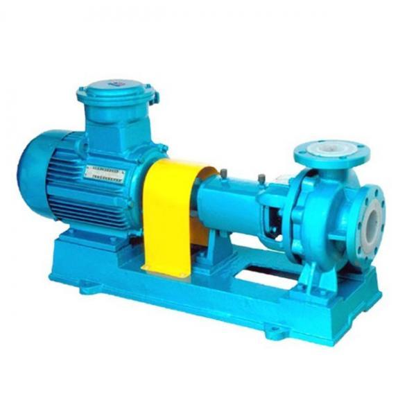 Vickers PV020R1K1T1VMMC4545 Piston Pump PV Series #1 image