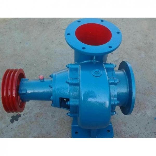 Vickers PV028R1K1T1NUPPX5935+PVACMS+RE Piston Pump PV Series #2 image